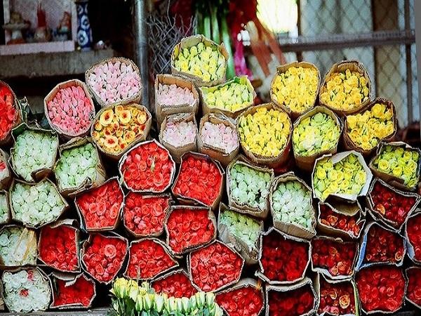 Kinh nghiệm bán hoa Tết có lãi và những mối buôn hoa Tết