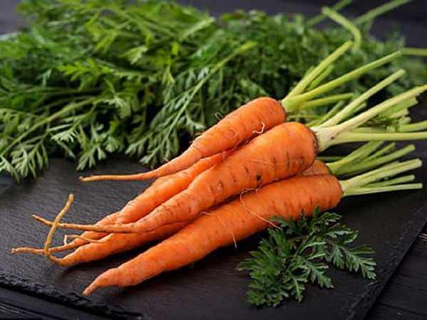 Soi cầu lô đẹp miền bắc khi mơ củ cà rốt