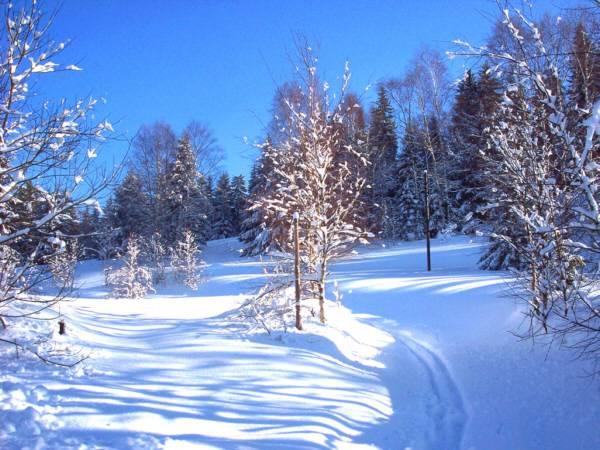 Mơ thấy tuyết là điềm báo lành hay dữ?